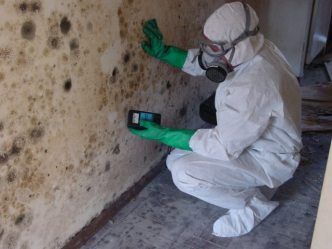 moisture detection during mold removal