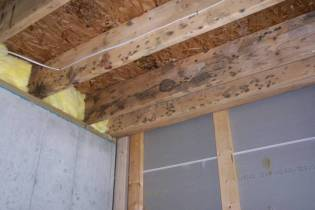 mold growth on wood frames in south pasadena
