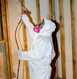 mold removal treatment of biocide
