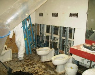 hayward-bathroom-mold-removal-mold-remediation