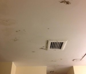 mold-inspection-needed-for-uc-berkeley-dorm-room
