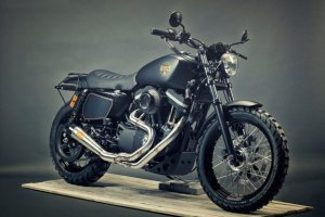 RnineT custom again!!