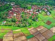 peluang usaha di desa baru berkembang