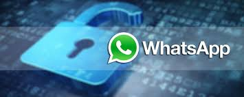 4 Ways to Hack Someones WhatsApp Messenger