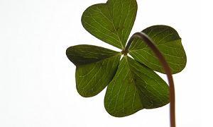 Simbol-simbol Keberuntungan