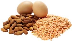 Asupan Protein pada Makanan