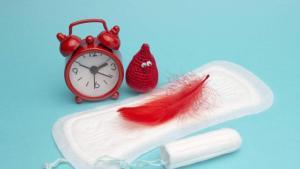Informasi Seputar Menstruasi