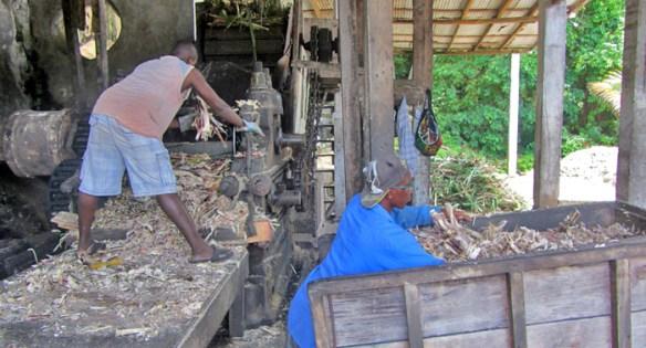 River Antoine Estate Grenada - gorzelnia rumu