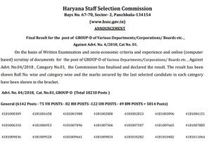 HSSC Group D Result 2018-2019