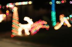 Lights Raindeer by Matias Masucci
