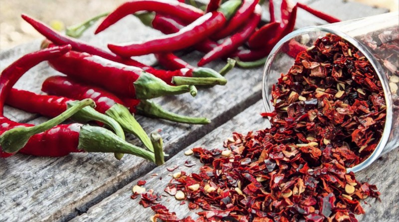 Indian scientists find way to enhance fat-burning capacity of chilli
