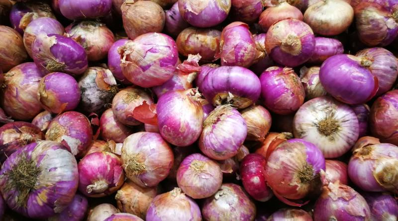 Onion Crisis: Centre orders 6,090 MT from Egypt in Dec, sets ex-Mumbai price Rs 52