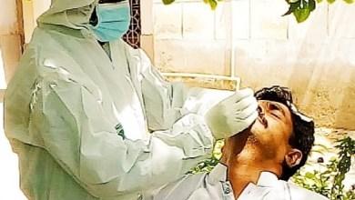 Photo of ھنڱورجا: ٽائون ڪاميٽي هنڱورجا جا 4 ملازم ڪرونا وائرس جو شڪار