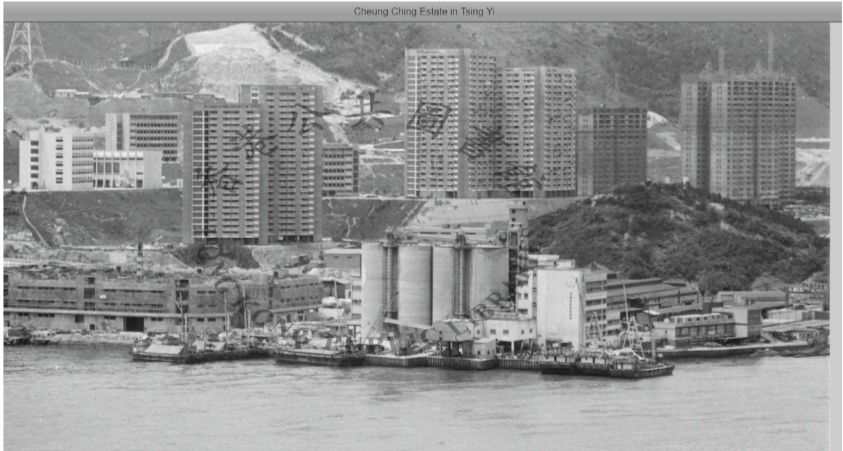 Hong Kong Cement Manufacturing Image 7 York Lo