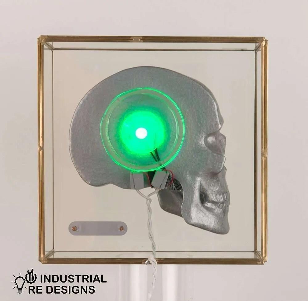 Schedel-skull-in-glazen-box-BINK-5
