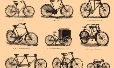 The Backward Bike and Neural Elasticity