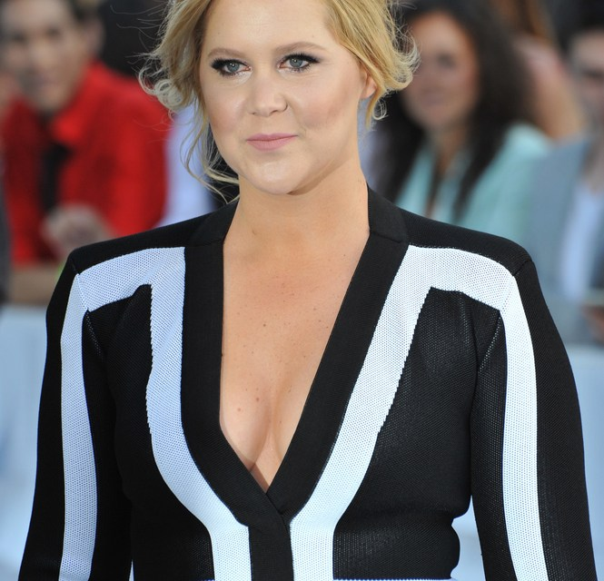Amy Schumer Calls Out Sexist Tweet