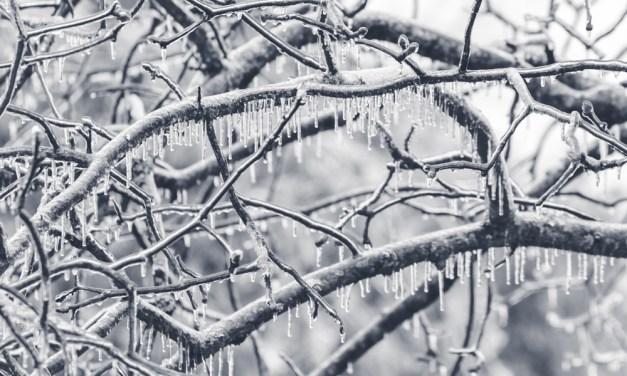February Fury: Winter Storms Rage Across North America