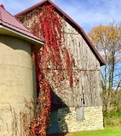 Door County Winery