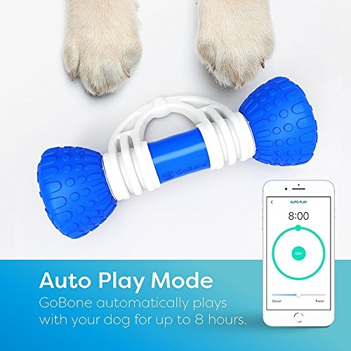 App-Enabled Smart Bone for Dogs