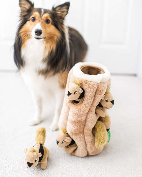 Hide-A-Squirrel Plush Squeaking Toys for Dogs Outward Hound Hide-A-Squirrel and Puzzle Plush Squeaking Toys for Dogs.