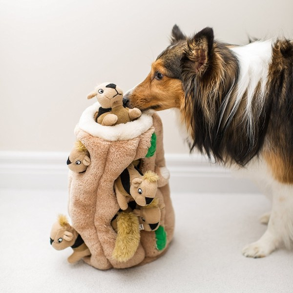 Hide-A-Squirrel Plush Squeaking Toys for Dogs