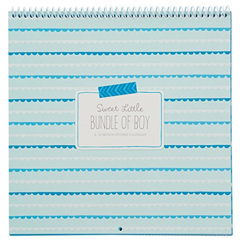 Hallmark Baby Boy Sticker and Photo 13-Month Calendar