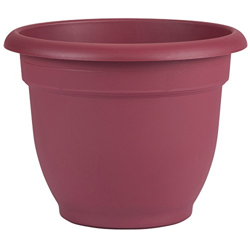 "Bloem Ariana Self Watering Planter, 12"", Union Red"