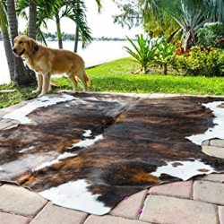 Rodeo Amazing Cowhide Skin Rug Tricolor Brown Large Size
