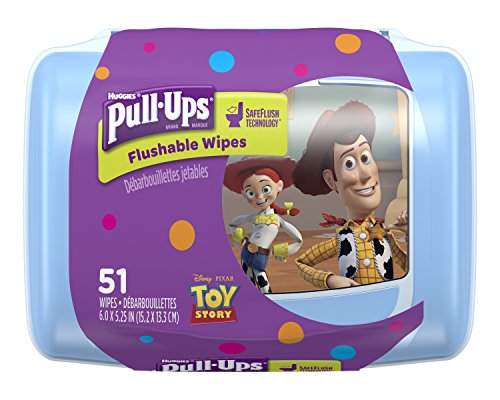 Pull-Ups Big Kid Flushable Wipes with OneTouch Dispensing Container, 51 Count