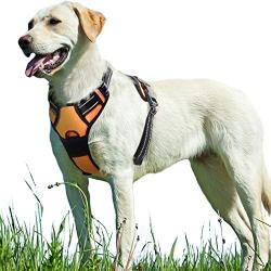 Walking Pet Harness with 2 Metal Ring and Handle