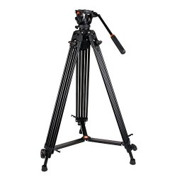 COMAN Professional Video Tripod Heavy Duty Aluminum 74 Inch Twin Tubes with Q5 Fluid Head Max loading 13.2 LB for Pro DV Cameras Camcorders