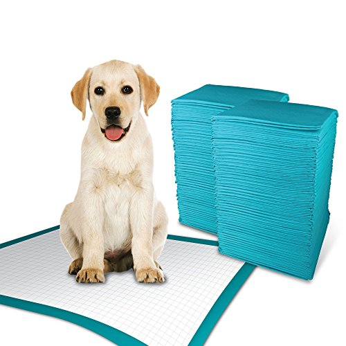Simple Solution Training Puppy Pads   Extra Large, 6 Layer Dog Pee Pads