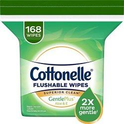 Cottonelle GentlePlus Flushable Wipes with Aloe & Vitamin E