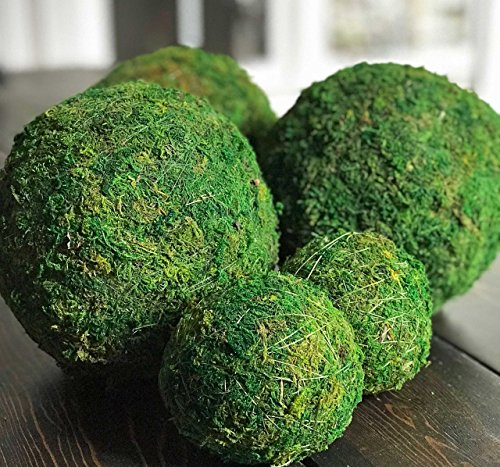 """12"""" Decorative Handmade Moss Balls for Home Decor12"""" Decorative Handmade Moss Balls for Home Decor"""