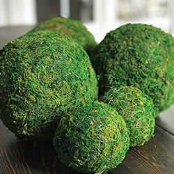 "12"" Decorative Handmade Moss Balls for Home Decor12"" Decorative Handmade Moss Balls for Home Decor"