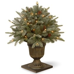 "National Tree 26 Inch ""Feel Real"" Frosted Artic Spruce Porch"