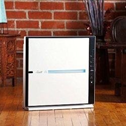 Rabbit Air MinusA2 Ultra Quiet HEPA Air Purifier