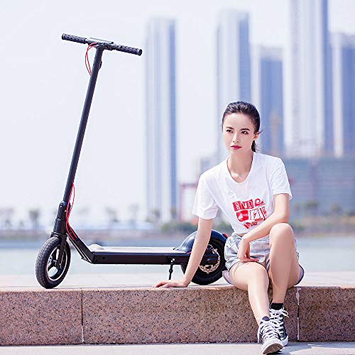 oldable E-Scooter with 10.5'' Vacuum Motor Tire