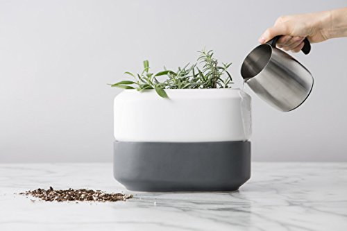 Chef'n Baking White Ceramic Self Watering herb Planter