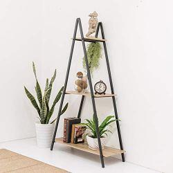 C-Hopetree A Frame Book Shelf Ladder Multipurpos