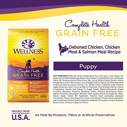 Wellness Complete Health Natural Grain Free Dry Puppy Food Wellness Complete Health Natural Grain Free Dry Puppy Food, Chicken & Salmon, 24-Pound Bag.