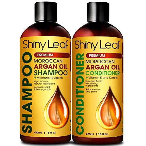 Moroccan Argan Oil Shampoo and Conditioner Set, Sulfate Free