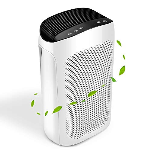 Air Purifier - 3-in-1 HEPA Air Purifier, Air Cleaner for Office & Large Room