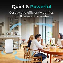 Alen BreatheSmart 45i HEPA Air Purifier for Rooms, 800 SqFt. Coverage Area Alen BreatheSmart 45i HEPA Air Purifier for Rooms, 800 SqFt. Coverage Area, with Multi-Purpose HEPA Filter for Mold, Bacteria, Odors, Allergies, Dust, Dander, and Fur in Graphite