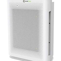 InvisiClean Aura II Air Purifier - 4-in-1 True HEPA, Ionizer, Carbon
