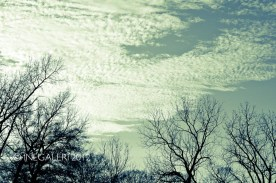 Leap Year Day Sky | February 2012-9