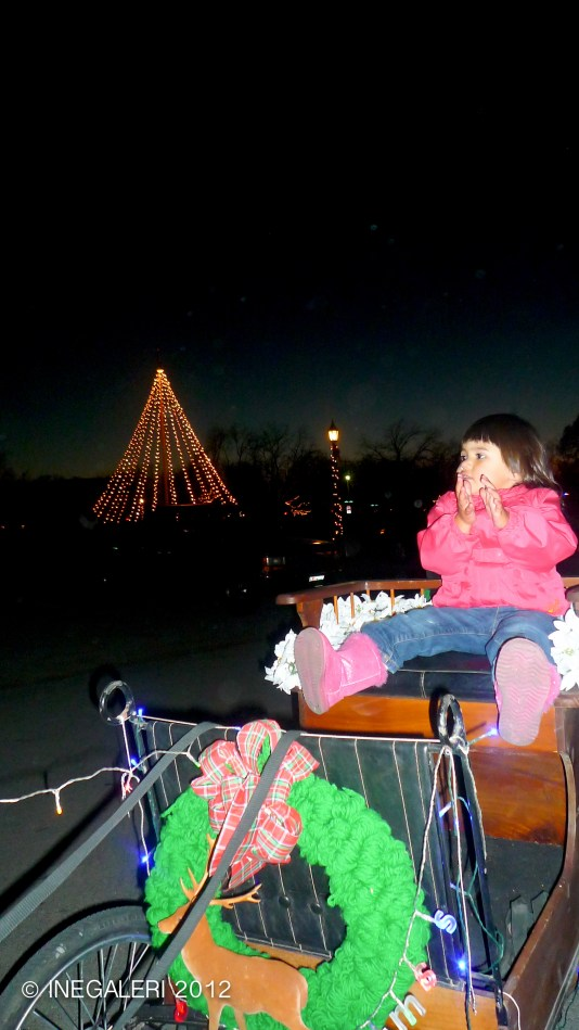 A sled rider and the Christmas tree