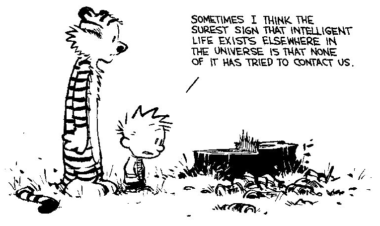 About a Boy–On the Sociological Relevance of Calvin (and