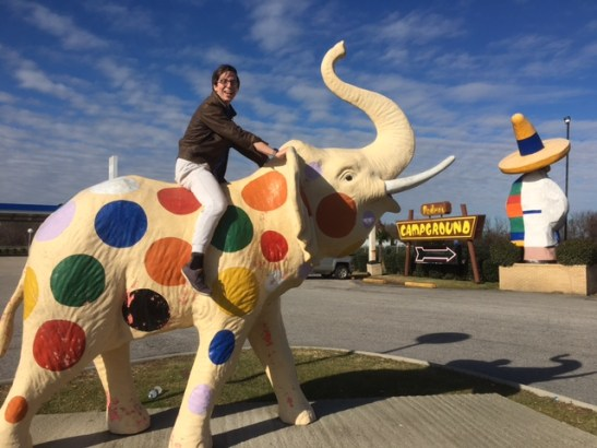 Michael on an elephant